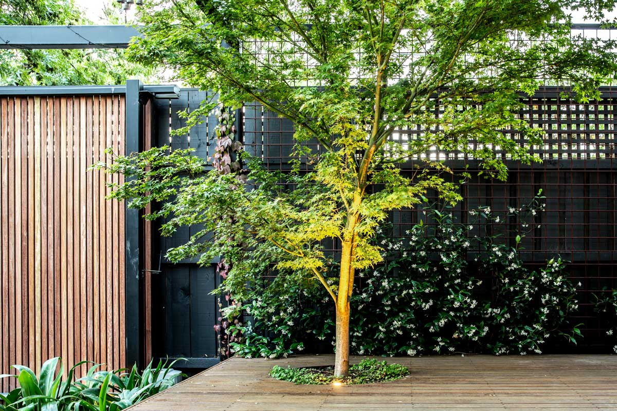 northcote-landscaping-11