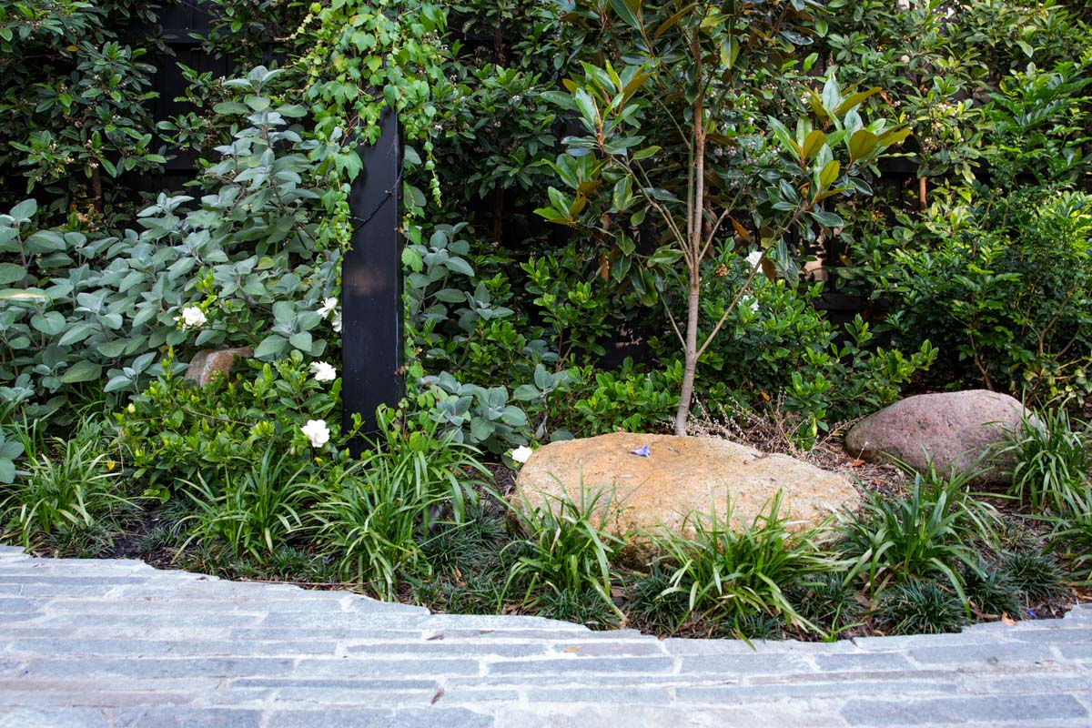 northcote-landscaping-5