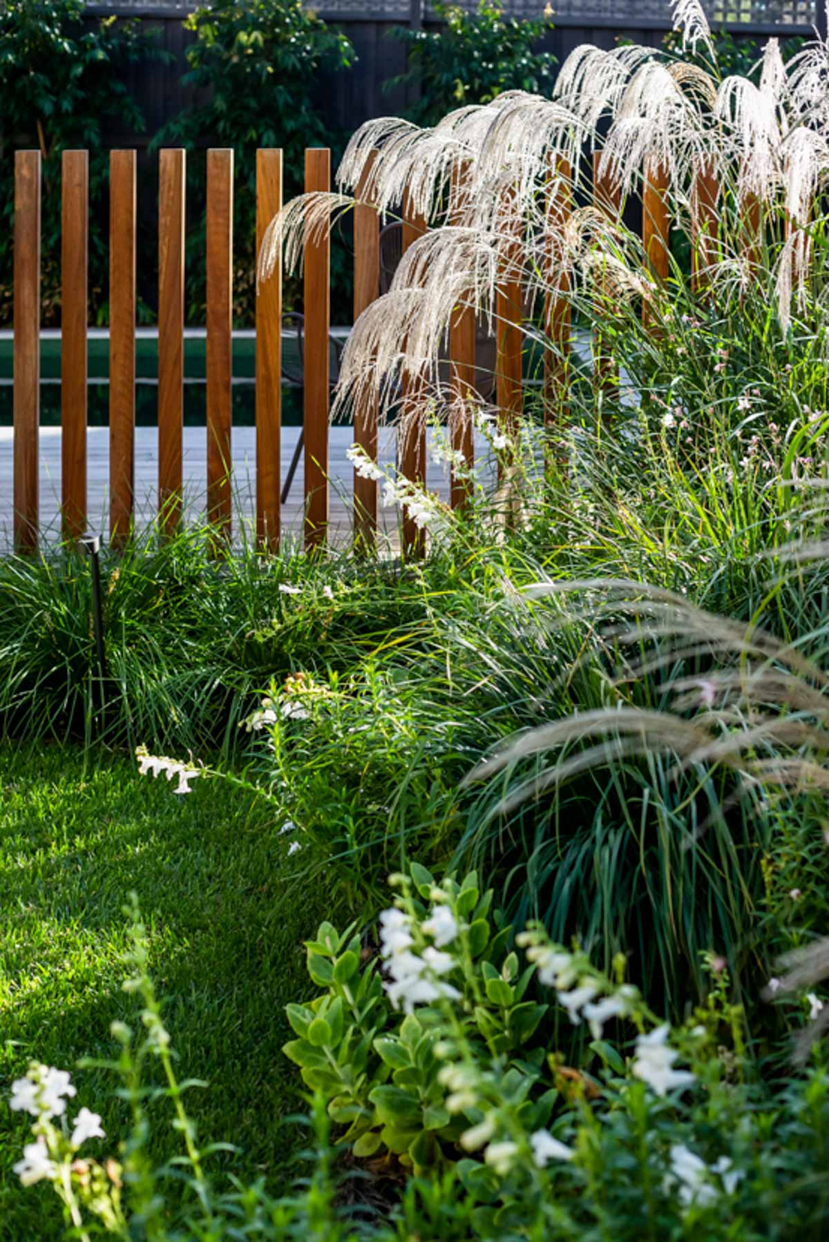 south-yarra-landscaping-3