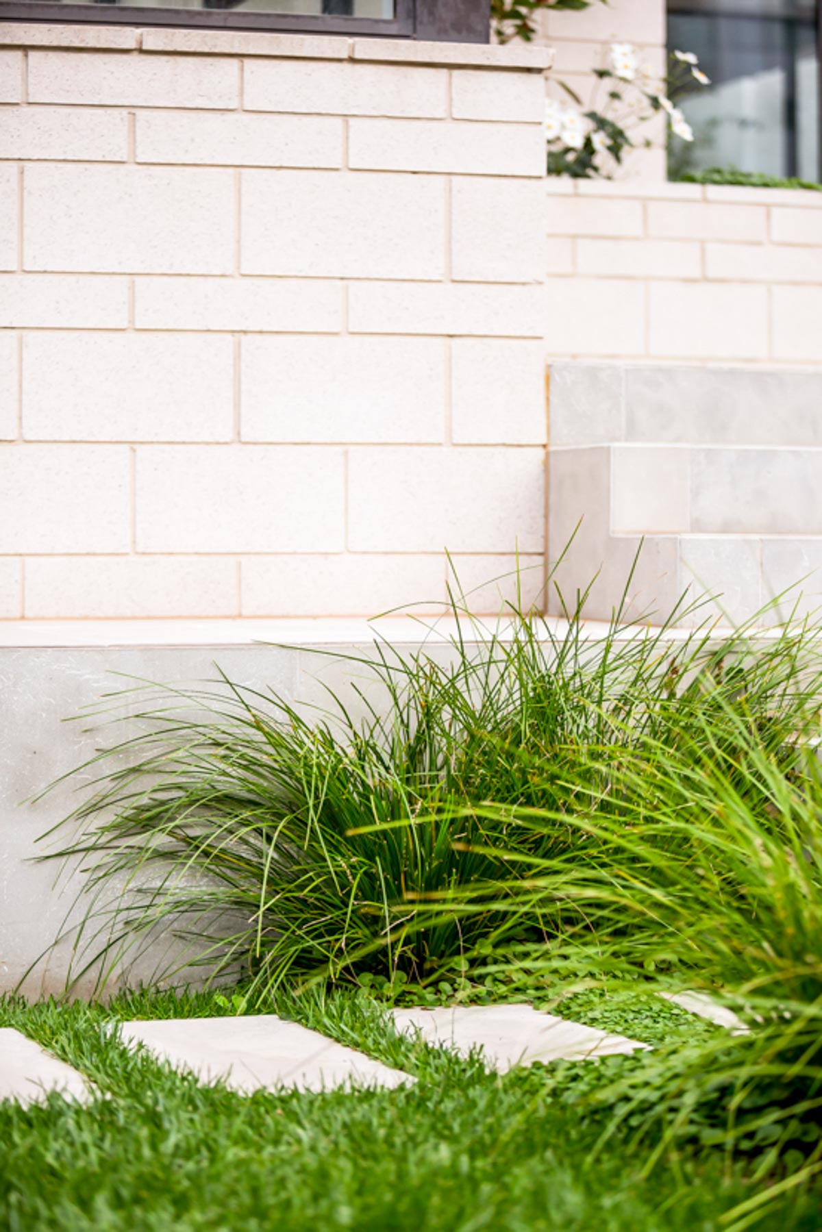 south-yarra-landscaping-7